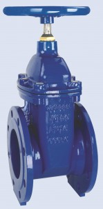 Rubber Wedge Gate Valve F4