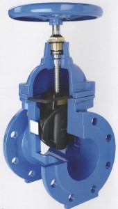 Rubber Wedge Gate Valve