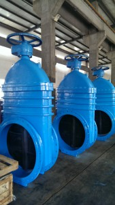 Bigger size rubber wedge gate valves